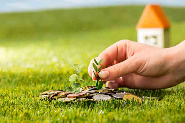coins and money on green grass - ways to invest money